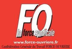 Election TPE 2012. dans Actualité logo-f.o