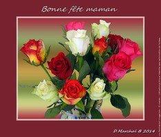 to_fete-des-meres-2014-20140522